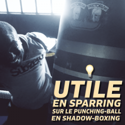 sparring, punching-ball, shadow-boxing, force différences